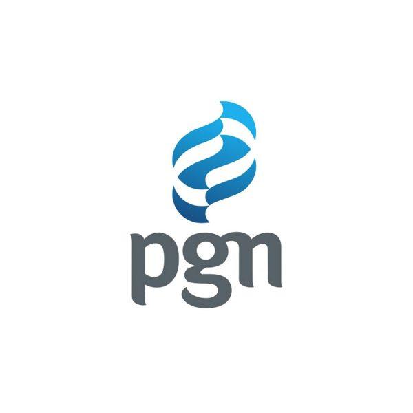 PGN Logo